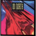 101 North - Forever yours LP featuring Living in somebodys dream / Forever yours / I wish that love would last / Somewhere somet