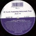 95 North featuring Sabrynaah Pope - Hold on (Black Science Orchestra Philly Church Vocal mix / Dub Science Disco / DJ Disciple C